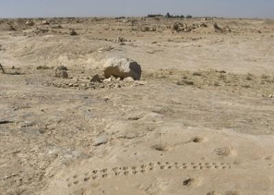Al-Jassasiya
