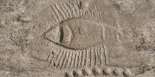 Al-Jassasiya petrogliph