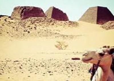 Meroe Piramidi