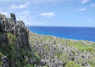 Niue vegetazione