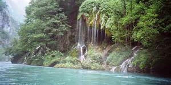 Parco Nazionale di Fruška Gora