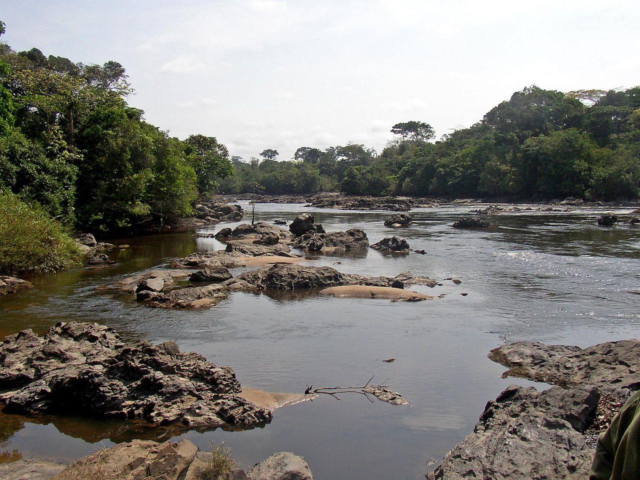 Repubblica democratica del Congo Epulu_Okapi_Reserve