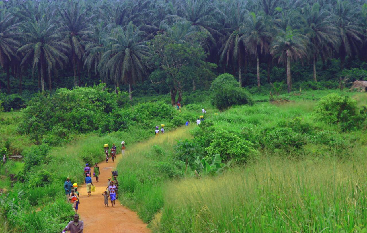 Sierra Leone Kenema-Kailahun_Road