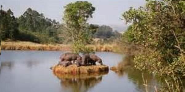 Swaziland Mlilwane-Wildlife-Sanctuary
