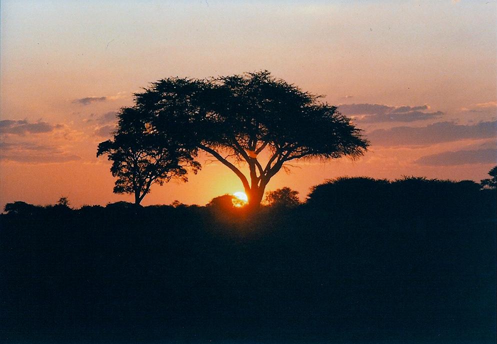 Zimbawe Hwange_sunset